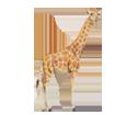 Girafe ##STADE## - robe 34