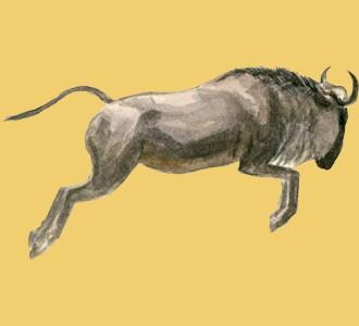 Recueillir un animal de la savane d'espèce gnou