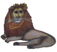Lion ##STADE## - robe 1000000035