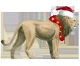 Lion ##STADE## - robe 117