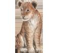 Lion bébé - robe 2